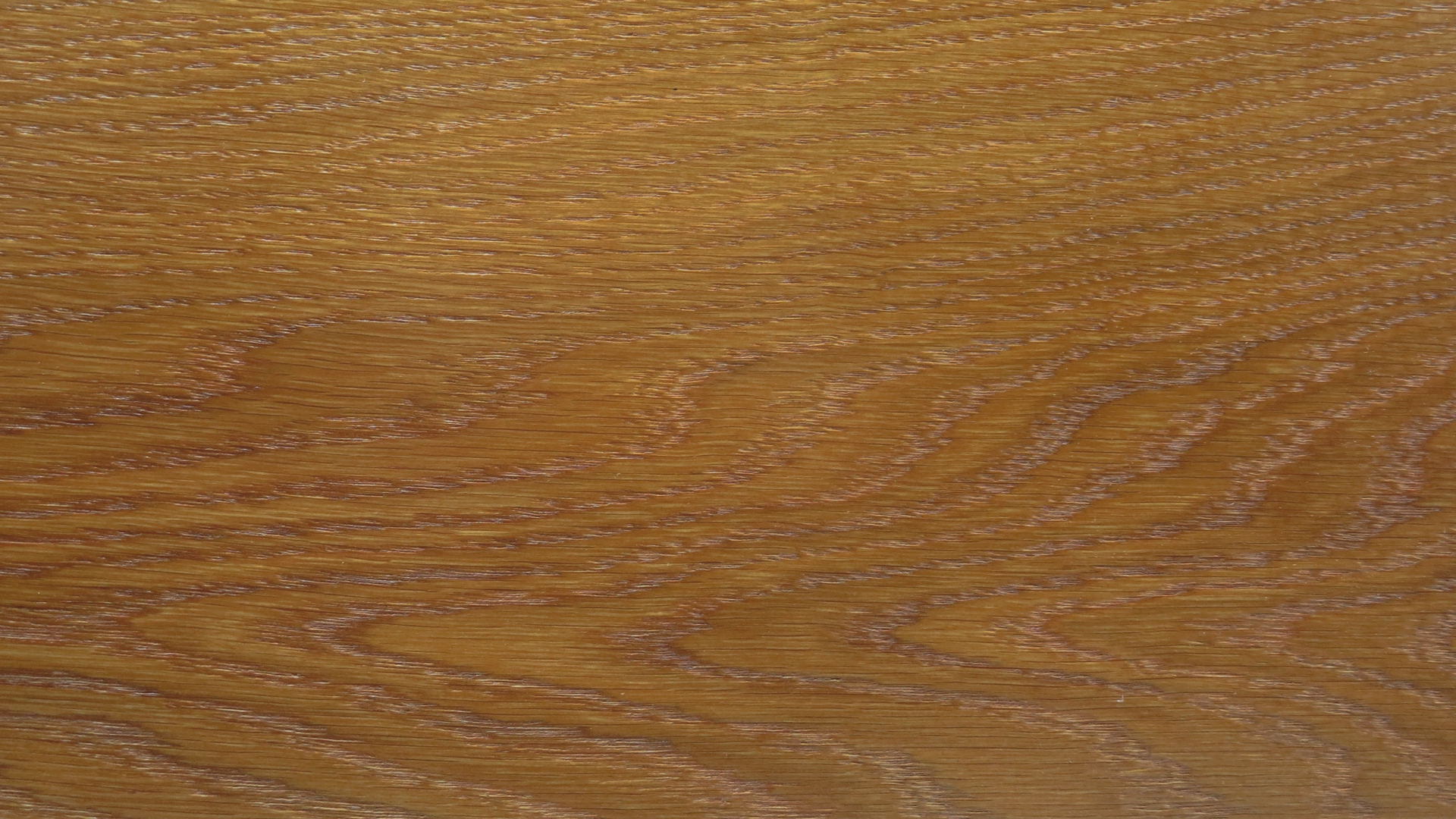 colorwood 01_57b7334c8fcc9