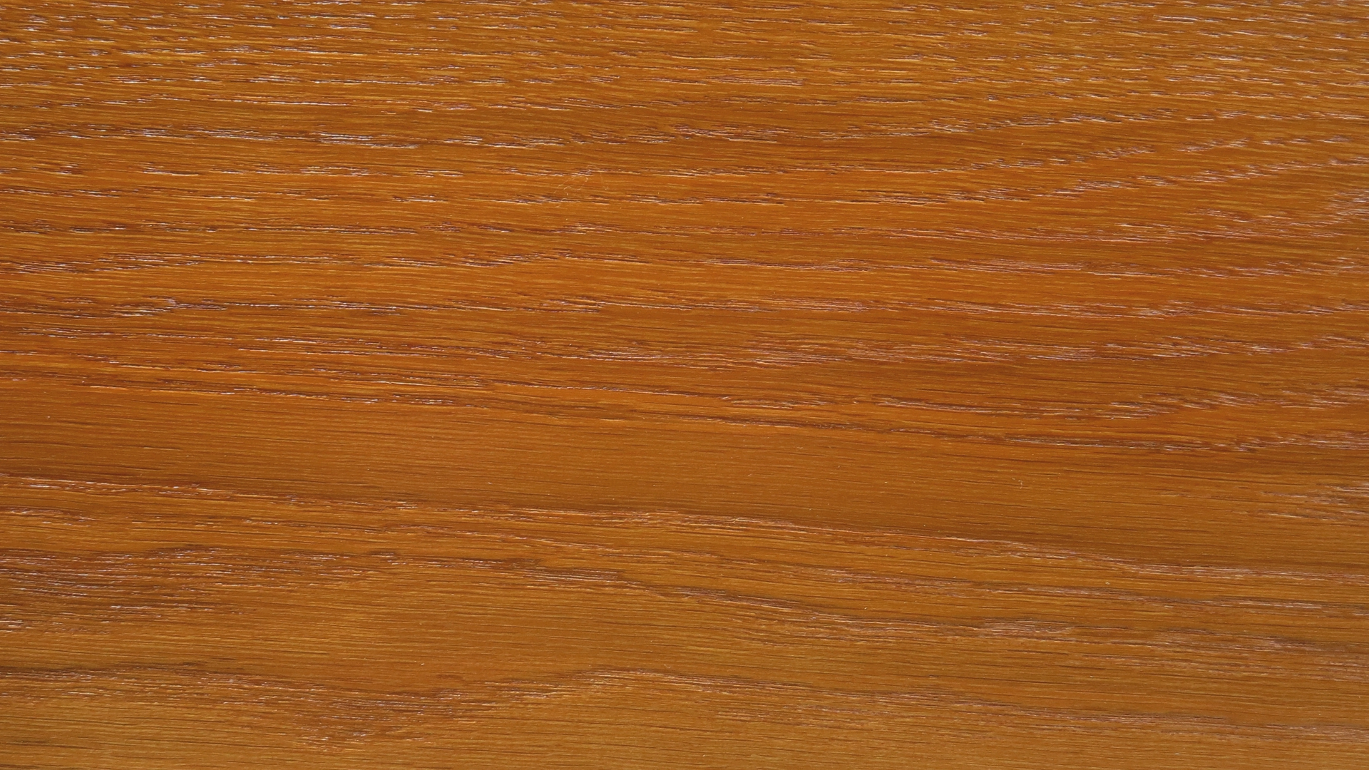 colorwood 02_57b7338dbee17