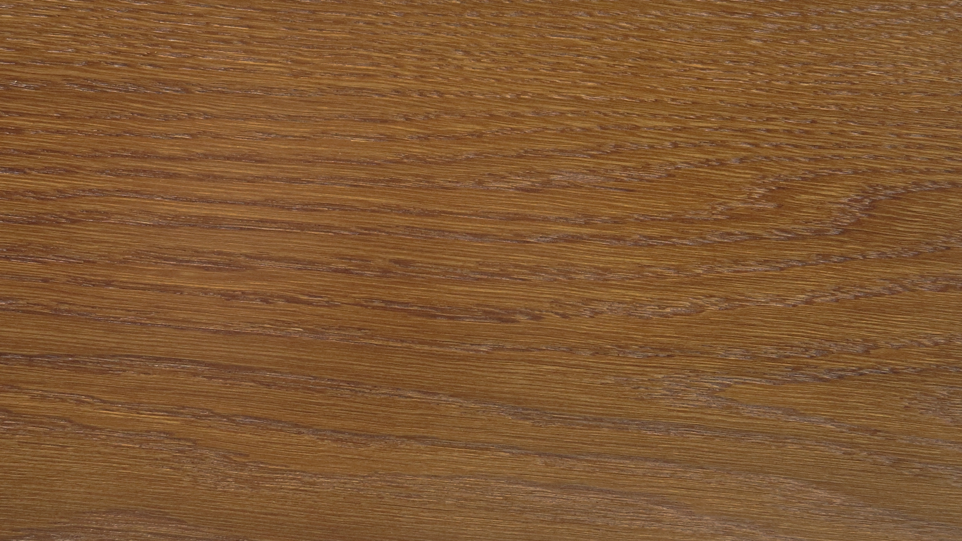 colorwood 04_57b733bb630a4