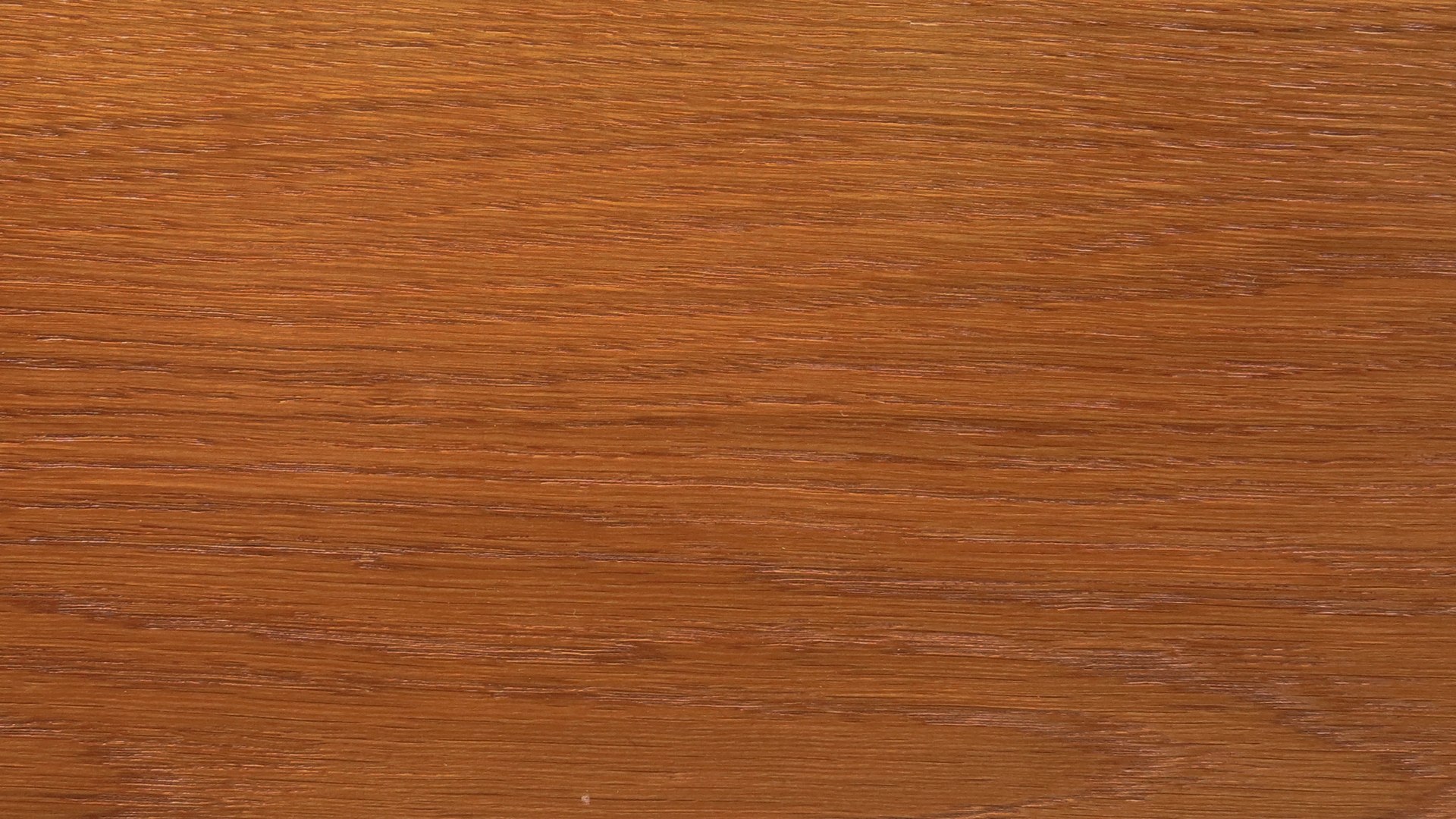 colorwood 06_57b73419d9d4d