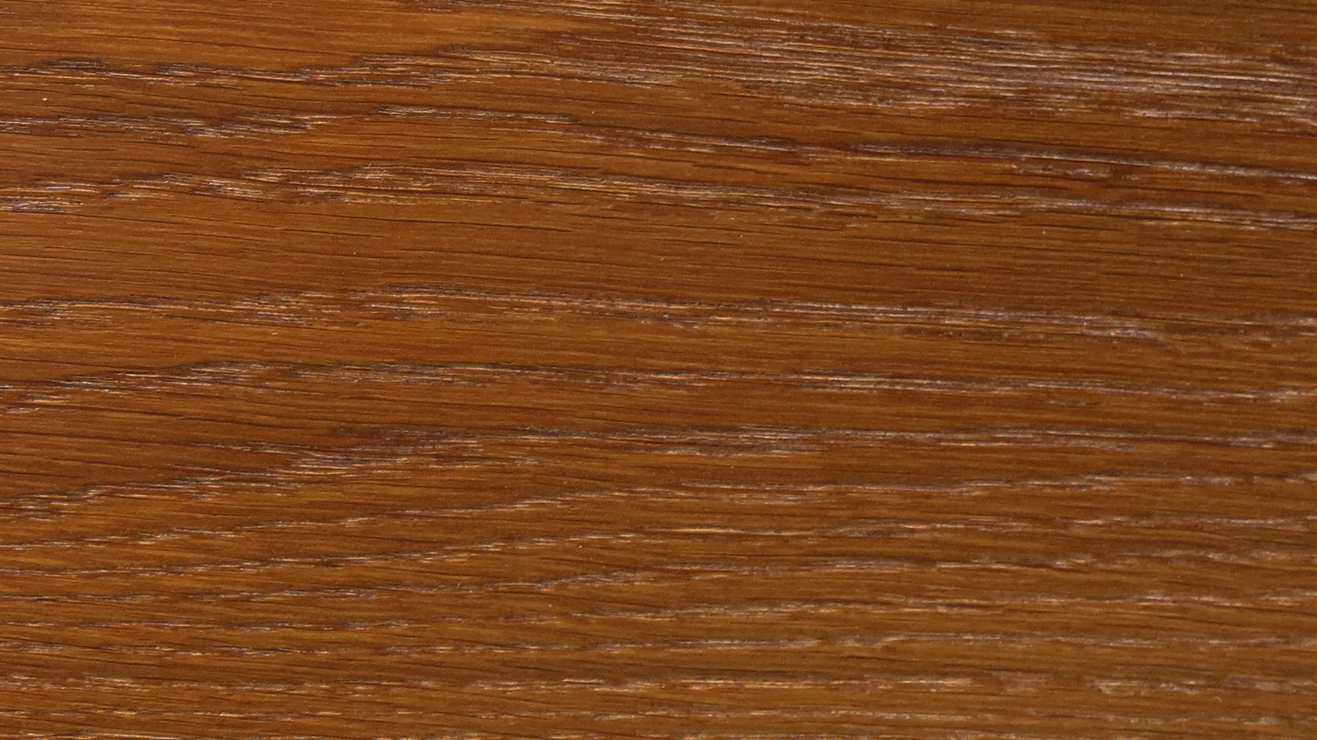 colorwood 08_57b73465d50ff