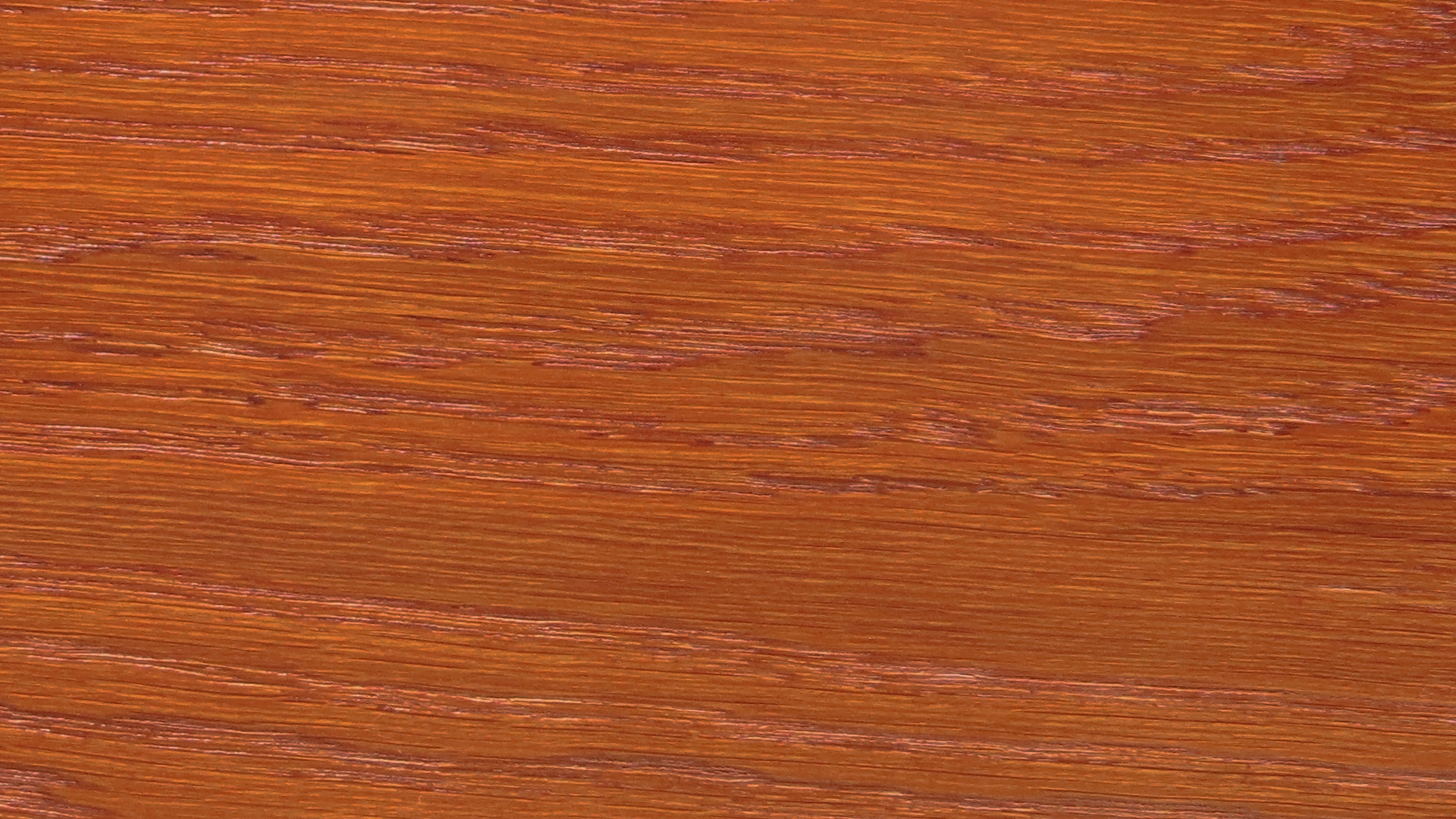 colorwood 21_57b7366bcab94